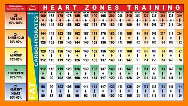 frecuencia-cardiaca-zonas